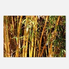 Golden bamboo plants Postcards (Package of 8)
