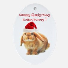 merry-xmas.png Oval Ornament