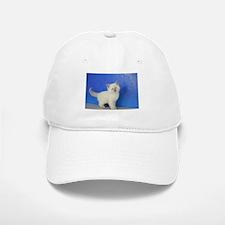 Janie - Ragdoll Kitten Blue Point Baseball Baseball Baseball Cap