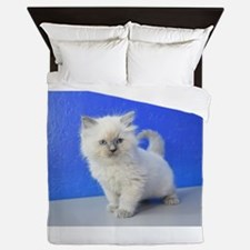 Kissy - Ragdoll Kitten Blue Point Queen Duvet