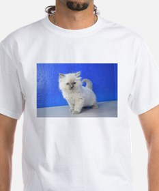 Kissy - Ragdoll Kitten Blue Point T-Shirt