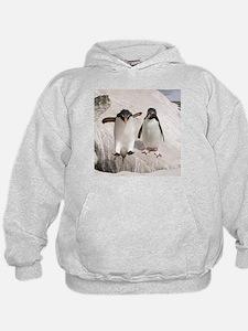ROPE 010608 - 003.jpg Sweatshirt