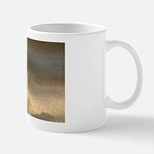 p0407. splash..? Mug