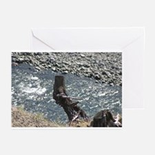 p0159. knight.? Greeting Cards (Pk of 10)