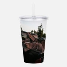 Siberian huskies in gr Acrylic Double-wall Tumbler