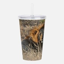 Male African Lion Acrylic Double-wall Tumbler