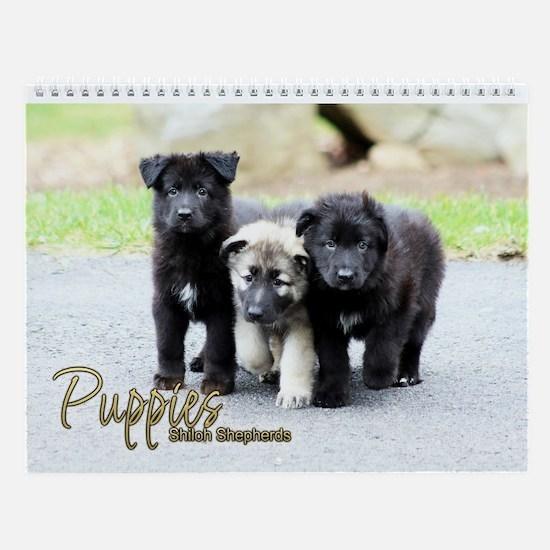 2017 Shiloh Puppy Wall Calendar