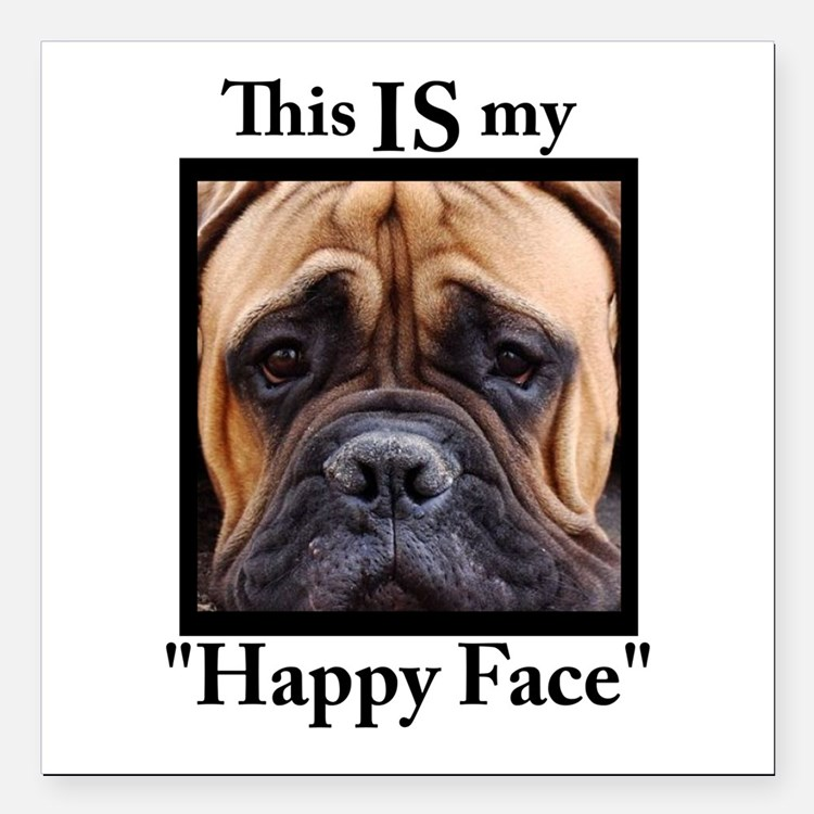"Cute Mastiff Square Car Magnet 3"" x 3"""