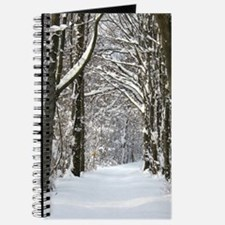 Snow trail Journal