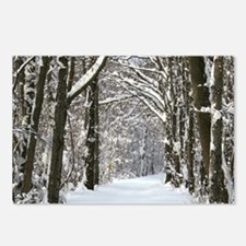 Snow trail Postcards (Package of 8)