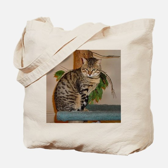 egyptian mau sitting 2 Tote Bag