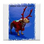 bring him home santa Tile Coaster