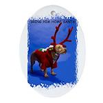bring him home santa Oval Ornament