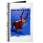 bring him home santa Journal