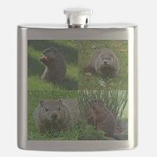 Groundhog medley Flask