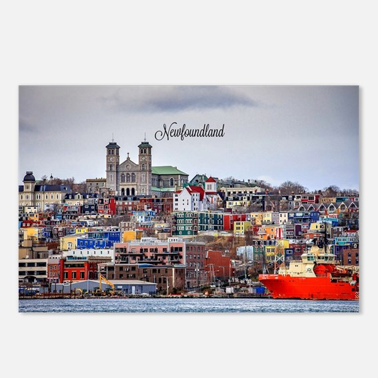 Cute Newfoundland Postcards (Package of 8)