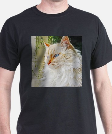 Flame Point Siamese cat T-Shirt