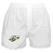 SUPER BEE 2 Boxer Shorts