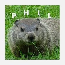 Phil Tile Coaster