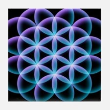 Funny Sacred geometry Tile Coaster