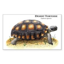 Desert Tortoise Rectangle Decal
