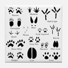 Animal Tracks Collection 1 Tile Coaster