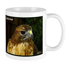 Bird of Prey Mug/Redtail Hawk