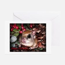 Flying Squirrel Christmas Greeting Cards