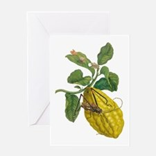 Lemon with Insects Greeting Cards