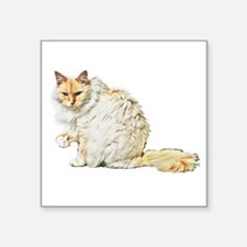"Bad kitty flipping the bird Square Sticker 3"" x 3"""