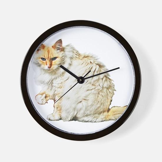 Bad kitty flipping the bird Wall Clock