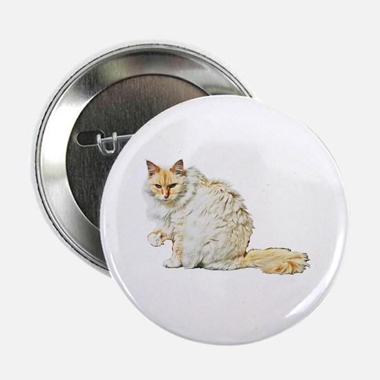 "Bad kitty flipping the bird 2.25"" Button"