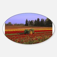 Field of Flowers Oval Decal