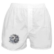 Dragon & Tiger Boxer Shorts