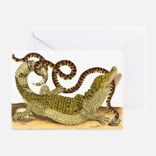 Caiman and False Coral Snake Greeting Cards