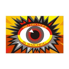 Big Brother is Watching (11x17 poster)