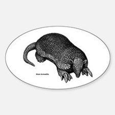 Giant Armadillo Oval Decal