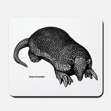 Giant Armadillo Mousepad