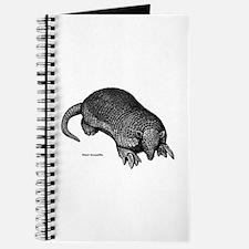 Giant Armadillo Journal