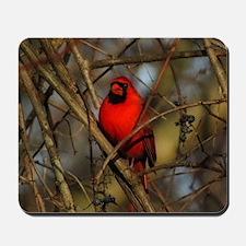 Cardinal Mousepad