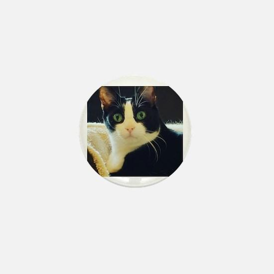 Funny Grumpy cat Mini Button