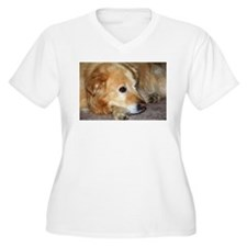 Cute Pets golden retrievers agility T-Shirt