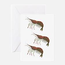 SHRIMP Greeting Cards