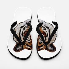 STARE Flip Flops