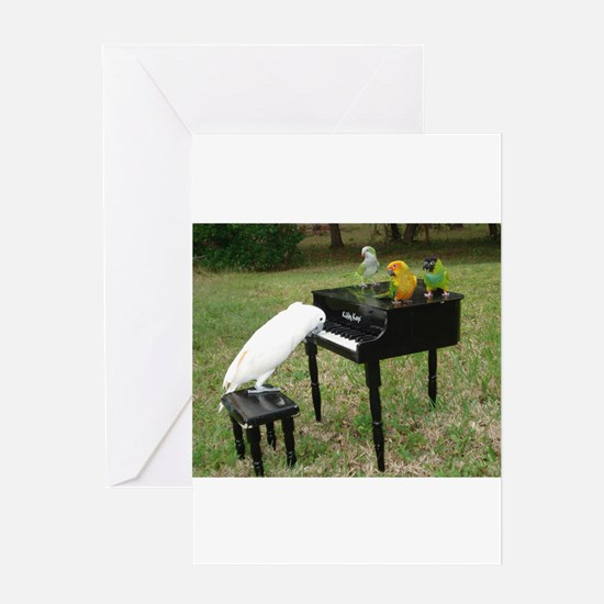 Pianist Parrots Greeting Cards