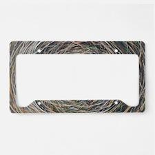 Funny Bird art License Plate Holder