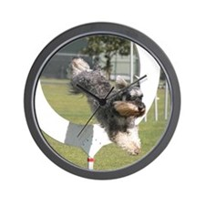 Cute Schnauzer agility Wall Clock