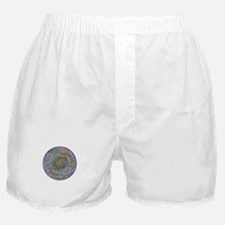 The Beginning Boxer Shorts