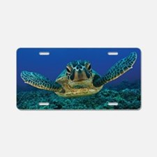 Turtle Swimming Aluminum License Plate