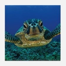 Turtle Swimming Tile Coaster